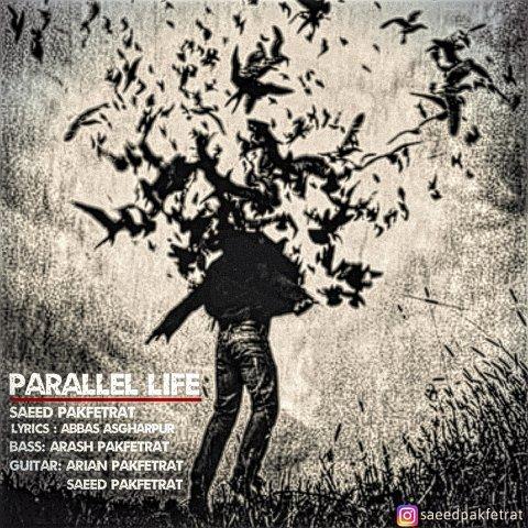 دانلود آهنگ جدید سعید پاک فطرت به نام زندگی موازی