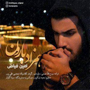 دانلود آهنگ جدید امین فیاض به نام همزاد بارون